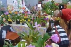 expo 2011_2
